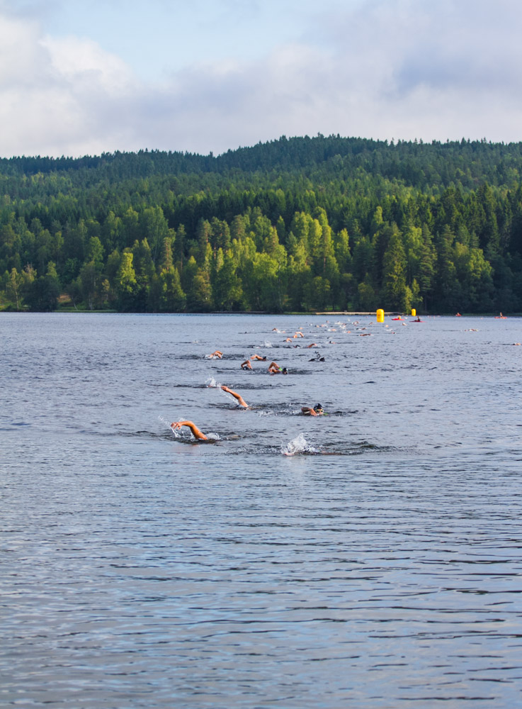 Triallan - Oslo Triathlon 2014-11