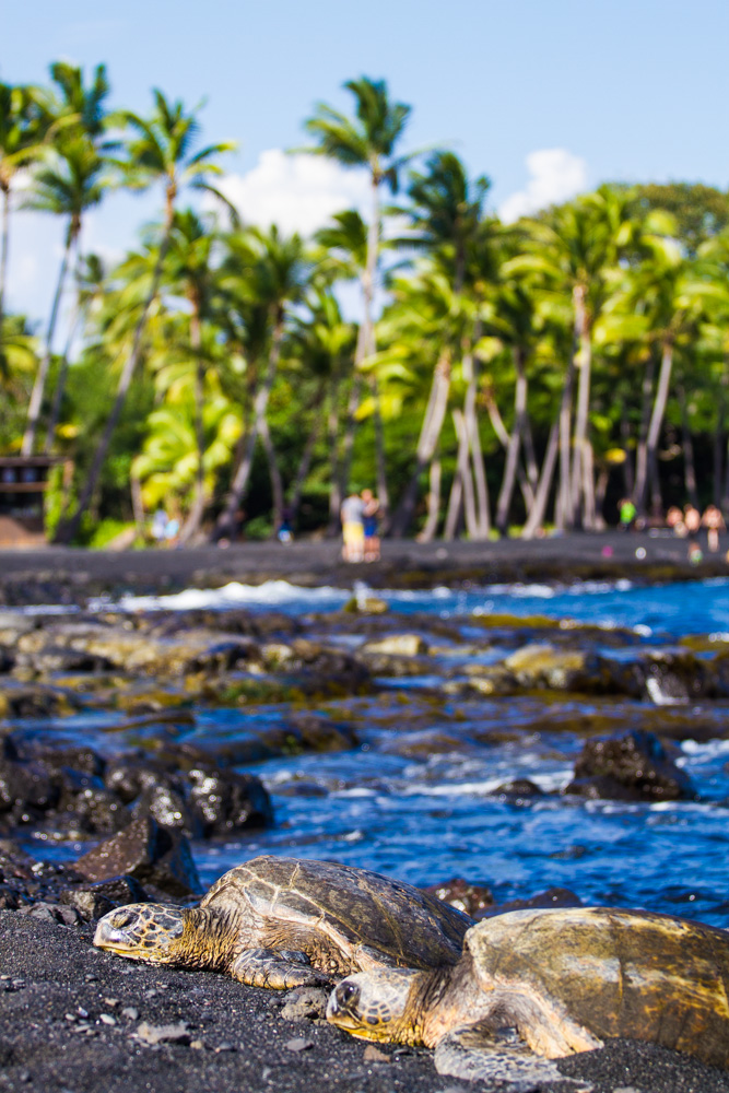 Black sand beach - Triallan - Ironman Hawaii - Allan Hovda-3