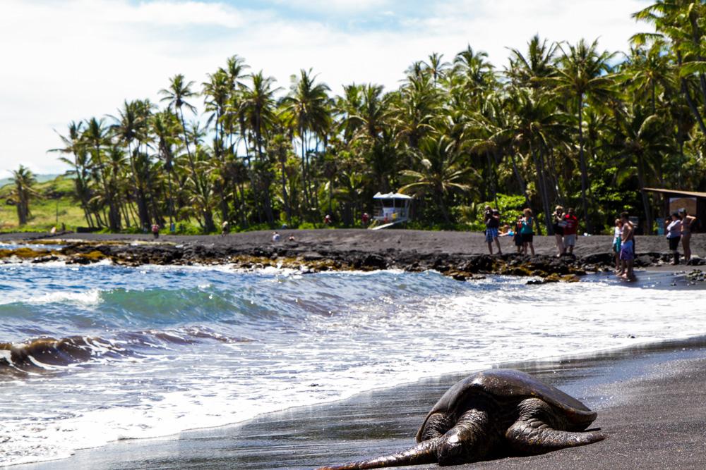 Black sand beach - Triallan - Ironman Hawaii - Allan Hovda-8