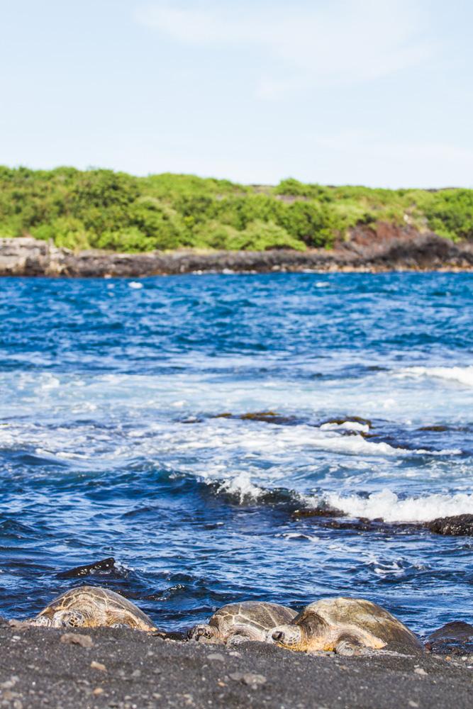 Black sand beach - Triallan - Ironman Hawaii - Allan Hovda
