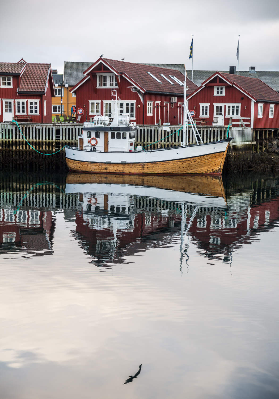 Blinkskudd fra Lofoten