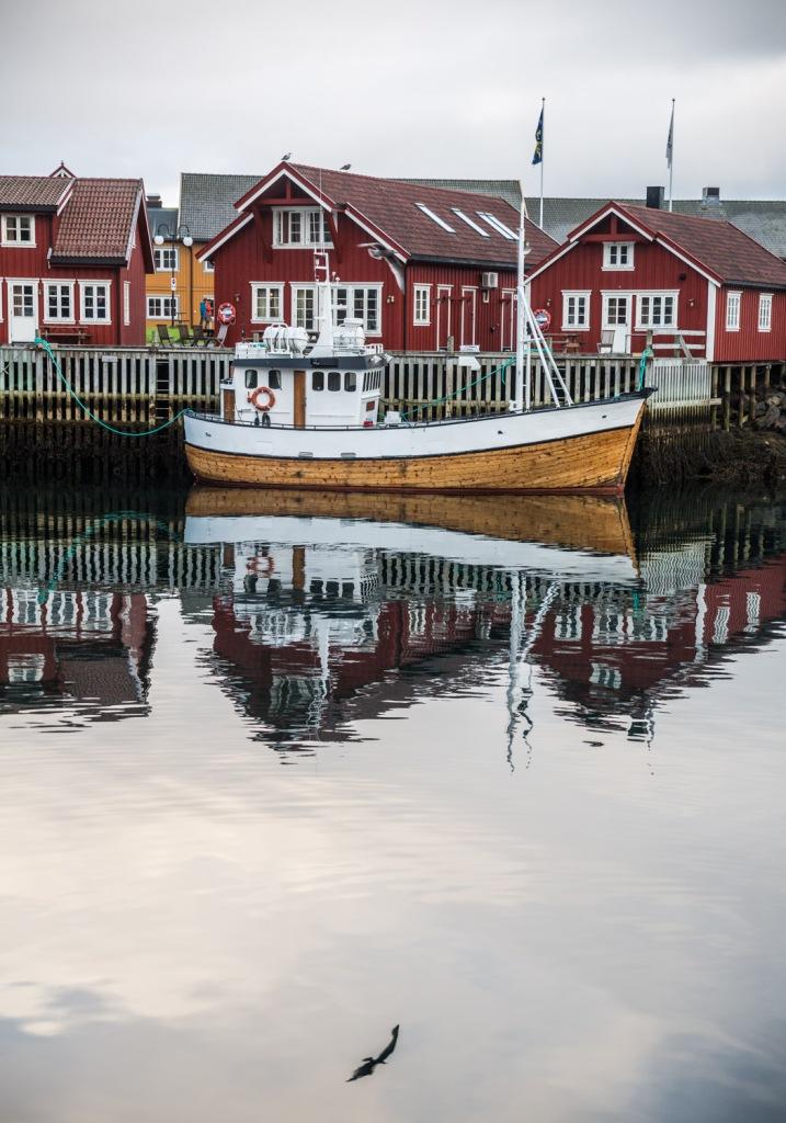 Triallan - Lofoten Triathlon - Svolvær - The Arctic Triple-19