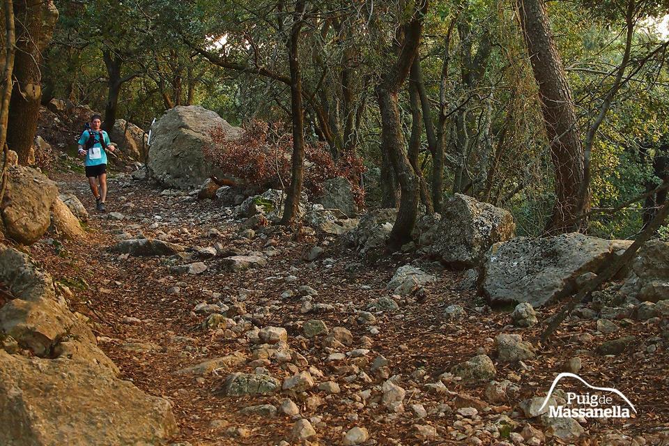 Caimari Epic Trail - Triallan - Allan Hovda - woods
