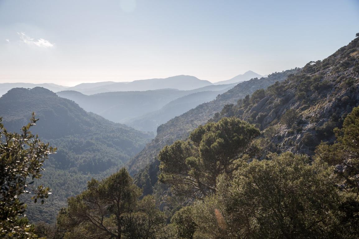 Triallan - Allan Hovda - Mallorca - Terrengløp - Fjelltur - Hiking-8