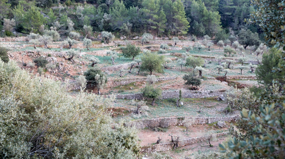 Triallan - Allan Hovda - Mallorca - Terrengløp - Fjelltur - Hiking-15